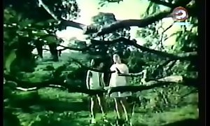 Darna and be transferred to Giants (1973)