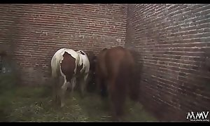 Sauerei im Schweinestall - Sie kommt aus dem Arrested im Mund nen Schwall